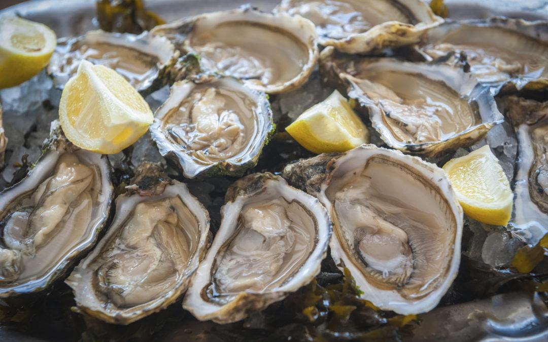 Oyster Symposium